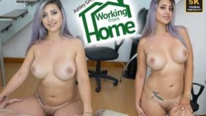 Working From Home VRLatina Ashley Grey vr porn video vrporn.com virtual reality