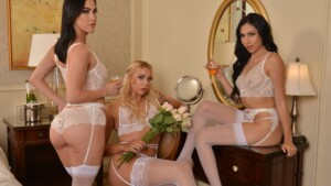 The Bride And Bridesmaids Hook Up With The Best Man Before The Wedding NaughtyAmericaVR Chanel Grey Diana Grace Judy Jolie vr porn video vrporn.com virtual reality